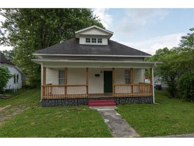 Johnson City Single Family Home For Sale: 213 Wilson Avenue