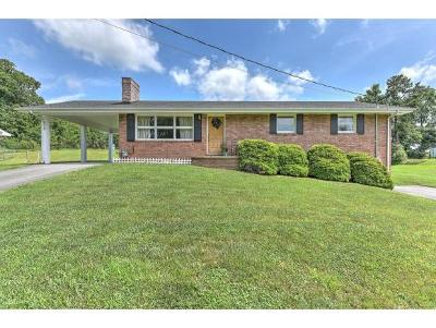 Blountville Single Family Home For Sale: 278 Piercy St