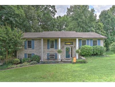 Greeneville TN Single Family Home For Sale: $159,900