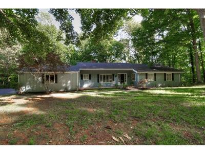Kingsport Single Family Home For Sale: 4514 Mitchell Road