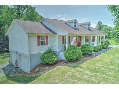 Rogersville TN Single Family Home For Sale: $159,900