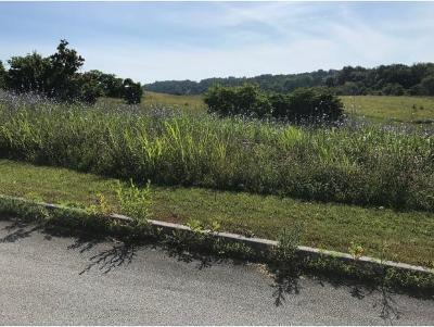 Residential Lots & Land For Sale: 86 Briarpatch Ct.
