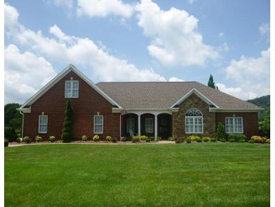 Kingsport TN Single Family Home For Sale: $549,900