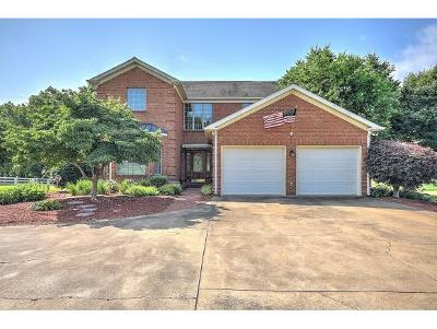 Greeneville Single Family Home For Sale: 110 Southwind Circle