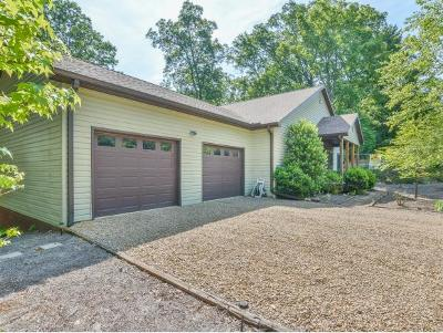 Unicoi Single Family Home For Sale: 125 Mountain Laurel Ct
