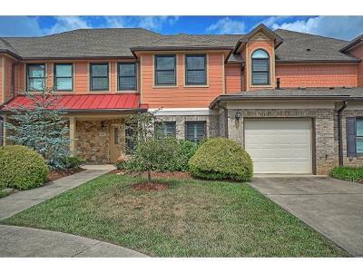 Johnson City Condo/Townhouse For Sale: 266 Westshore Pt #6-C