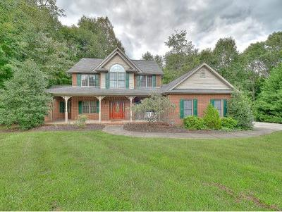 Piney Flats Single Family Home For Sale: 205 Allison Ct.