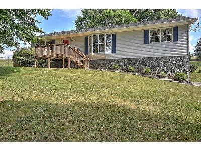 Jonesborough Single Family Home For Sale: 311 Kinchloe Mill Rd