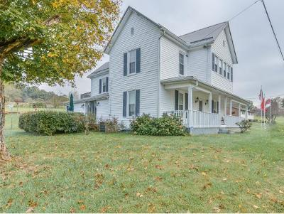 Blountville Single Family Home For Sale: 565 Droke Lane