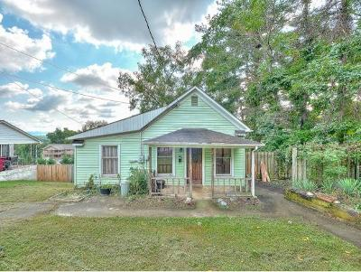Johnson City Single Family Home For Sale: 152 E Highland Ave.