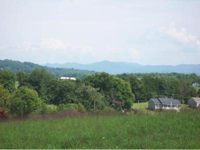 Greene County Residential Lots & Land For Sale: 350 Calico Road