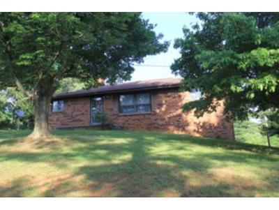 Telford Single Family Home For Sale: 313 Miller Road
