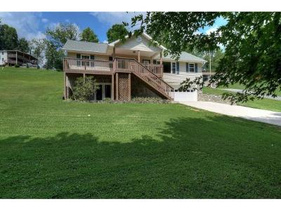 Unicoi Single Family Home For Sale: 420 Sugar Hollow Road