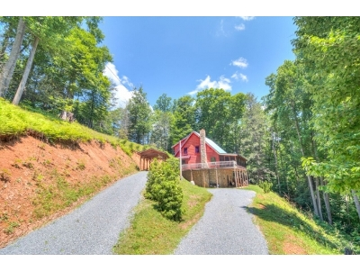 Roan Mountain Single Family Home For Sale: 154 Garland Road