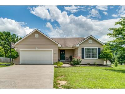 Piney Flats TN Single Family Home For Sale: $244,900