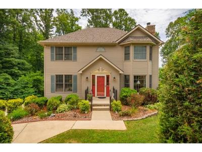 Piney Flats Single Family Home For Sale: 261 Allison Cove Trail