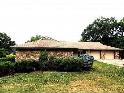 Rogersville Single Family Home For Sale: 176 Timberlake Drive