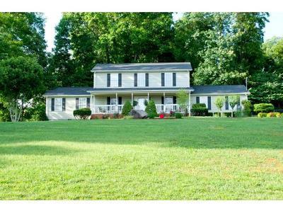 Bristol TN Single Family Home For Sale: $244,900