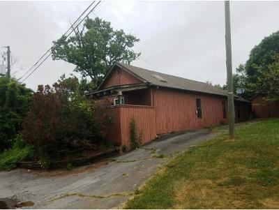 Fall Branch Single Family Home For Sale: 1191 Mill Creek Rd