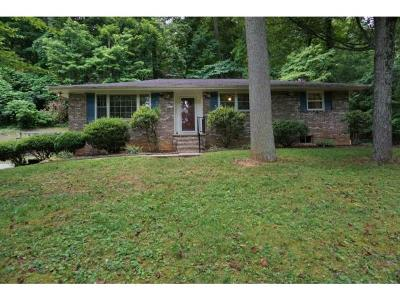 Kingsport TN Single Family Home For Sale: $154,000