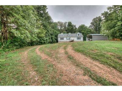 Bristol TN Single Family Home For Sale: $219,000
