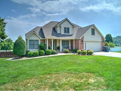 Kingsport TN Single Family Home For Sale: $359,900