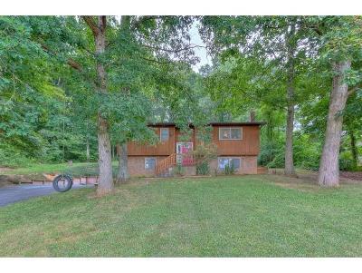 Jonesborough Single Family Home For Sale: 110 Webb Court