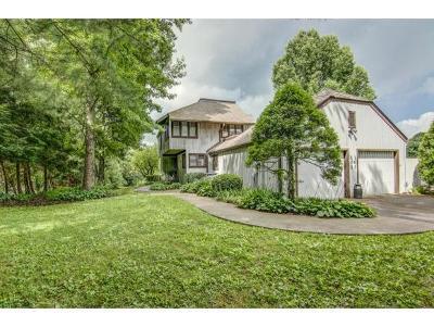 Bristol TN Condo/Townhouse For Sale: $139,900