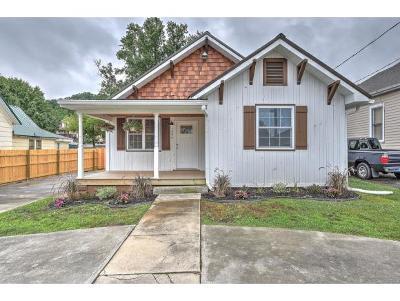 Bristol TN Single Family Home For Sale: $129,900