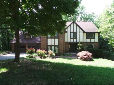 Kingsport TN Single Family Home For Sale: $324,993