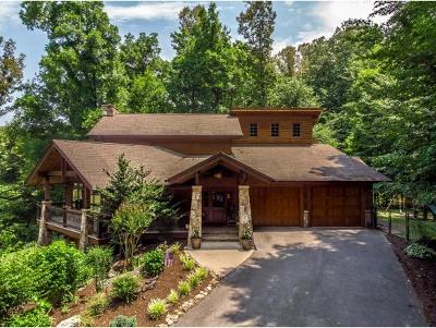 Jonesborough Single Family Home For Sale: 285 Claude Simmons Road