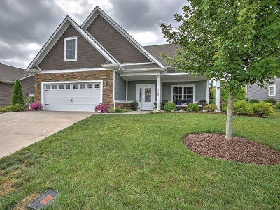 Kingsport TN Single Family Home For Sale: $354,900