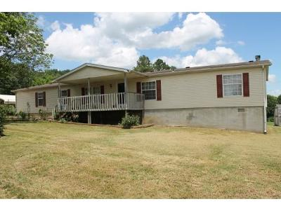 Blountville Single Family Home For Sale: 201 Cave Hill Rd