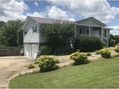 Greeneville Single Family Home For Sale: 485 Kinser Park Lane