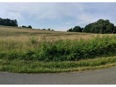 Johnson City Residential Lots & Land For Sale: TBD Mountain View Rd