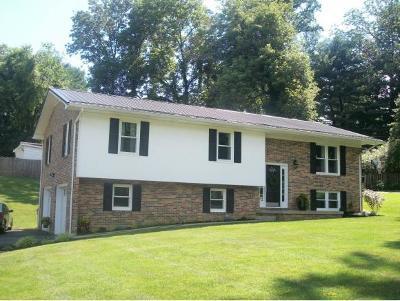 Bristol TN Single Family Home For Sale: $174,900