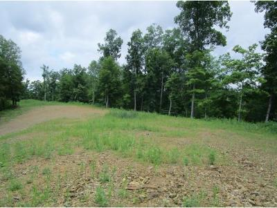Bristol Residential Lots & Land For Sale: TBD S Holston Dam Rd