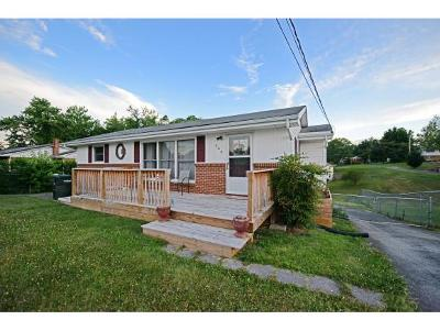 Greeneville Single Family Home For Sale: 204 Mayor Ave
