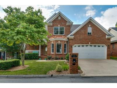 Kingsport Single Family Home For Sale: 214 Alpine Trail