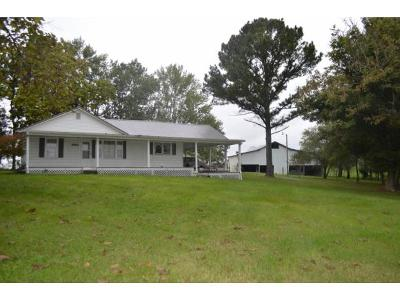 Mosheim Single Family Home For Sale: 8965 Lonesome Pine Trail