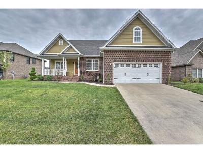 Kingsport Single Family Home For Sale: 4213 Anchor Pointe