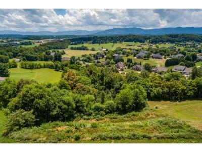 Washington-Tn County Residential Lots & Land For Sale: 119 Simmons Ridge