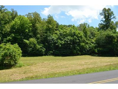 Washington-Tn County Residential Lots & Land For Sale: TBD New Hope Rd