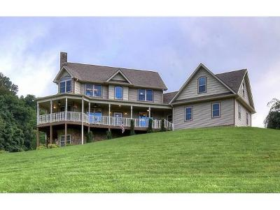 Blountville Single Family Home For Sale: 3327 Island Road