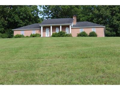 Rogersville Single Family Home For Sale: 117 Regency Drive