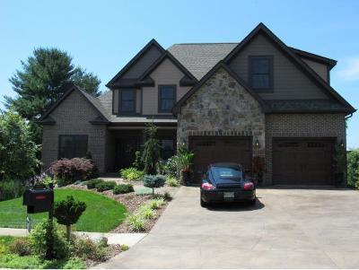 Johnson City Single Family Home For Sale: 2059 Sawyers Pond