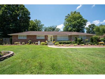 Kingsport Single Family Home For Sale: 2113 Tallwood Drive