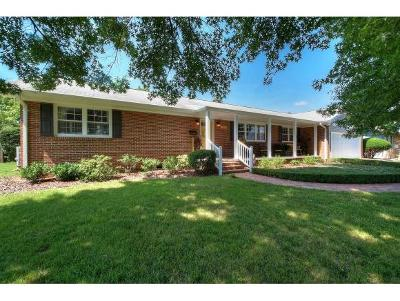 Kingsport Single Family Home For Sale: 1305 Dupont Drive