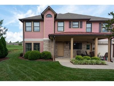 Johnson City Condo/Townhouse For Sale: 324 Westshore Pointe #324