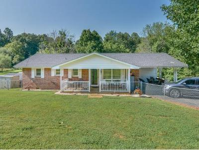 Blountville Single Family Home For Sale: 279 Mill Road